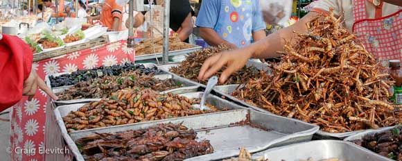 Food insects at market, Chanthaburi, Thailand